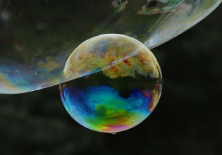 2018-19 PRINT RND1-2nd TILGATE PARK IN A BUBBLE by Paula Titheradge