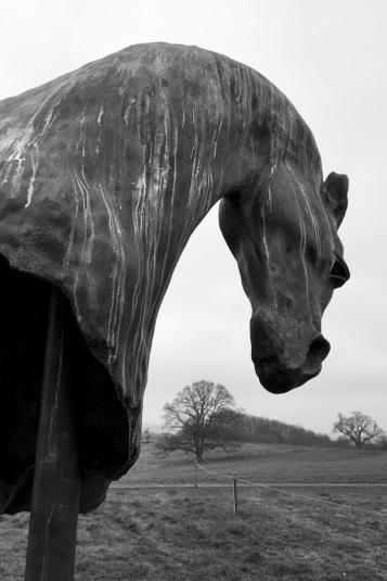 2018-19 PRINT RND1-HORSE by George Redgrave