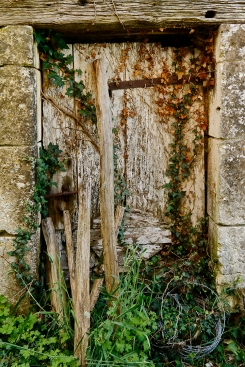 2019-20 PRINT rnd1 - GLORIOUS DERELICTION by Edwin Cowley