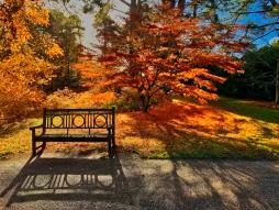 Take a Seat_Andrew Kernan_