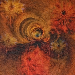 2019-20 PRINT rnd2 - AFRICAN DAISY ABSTRACT by Ros Wood