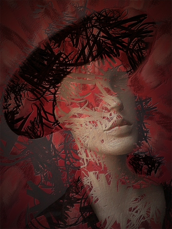 exhibition image (Autumn 2020) | The Mannequin Abstract by Ros Wood LRPS